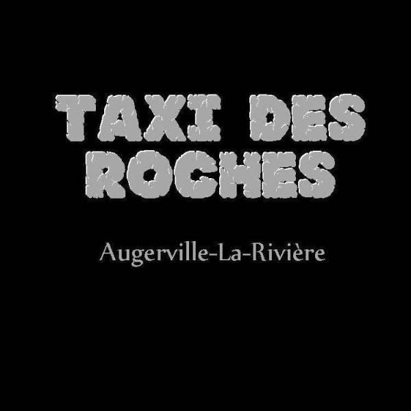taxi ile de france et loiret taxi des roches service action sant. Black Bedroom Furniture Sets. Home Design Ideas